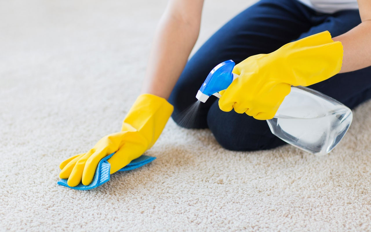 Professional cleaninf